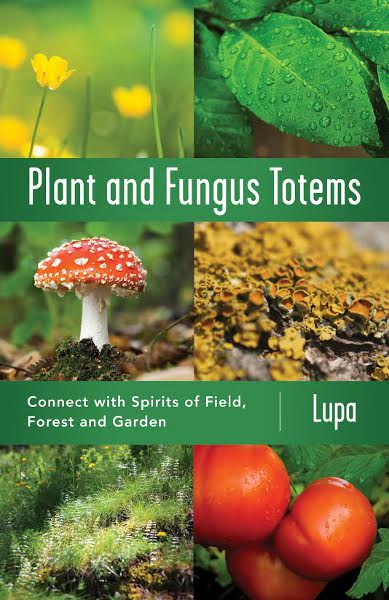 Plant and Fungus covermedium