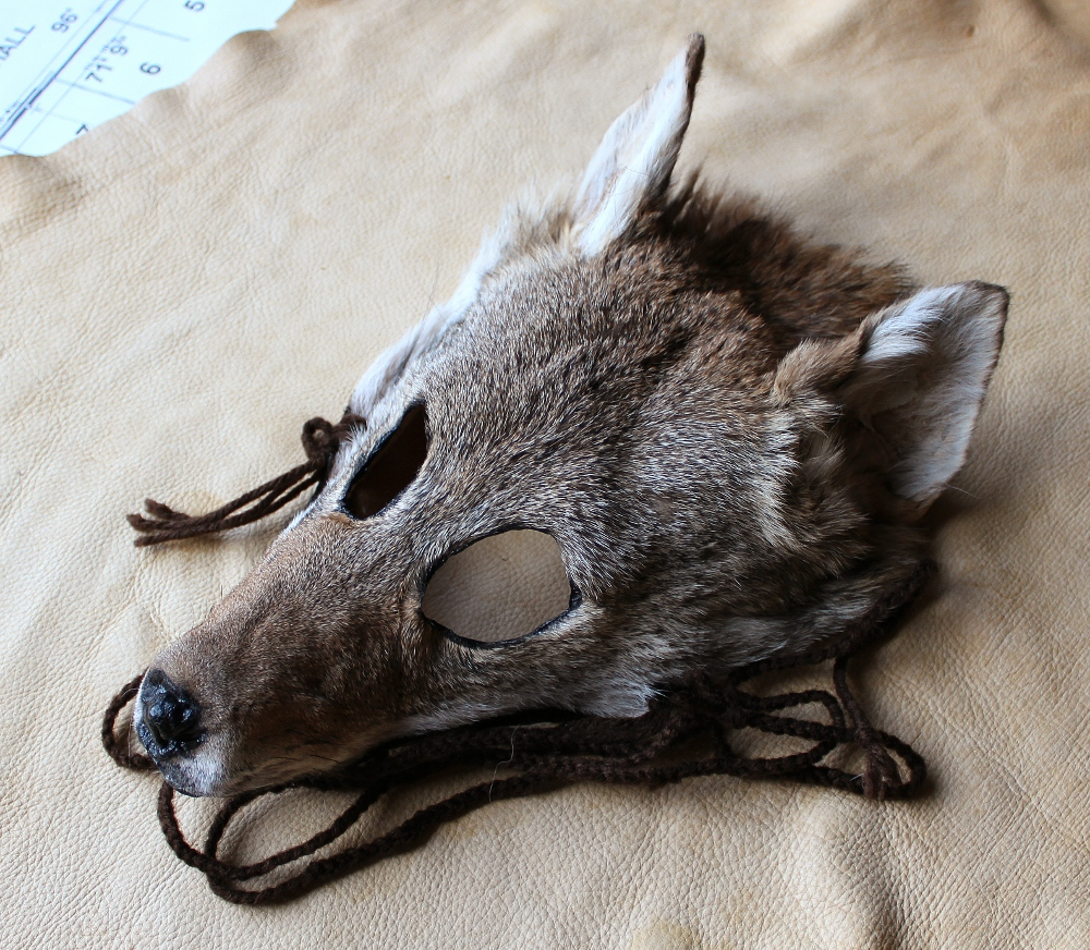 coyotemask3